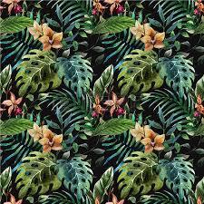 Tropical Plants Images - tropical plants stock photos royalty free tropical plants images