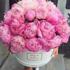 peonies flower delivery klassische brautsträuße mit pfingstrosen friedatheres pink