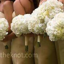 white hydrangea bouquet hydrangea is a option for bridesmaid bouquet because the