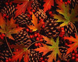 autumn scavenger hunt for kids