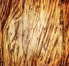 abstract wooden background textured wallpaper aged grungy wood