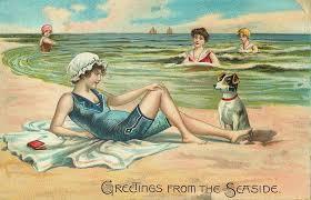 the vintage moth seaside vintage postcard