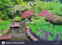 koi pond stock photos u0026 koi pond stock images alamy