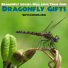 unique dragonfly gifts dragonfly will these cool dragonfly gift ideas gift
