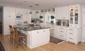 unusual ideas plastic kitchen cabinets delightful design plastic