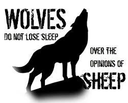 free printable u2013 wolves lose sleep opinions