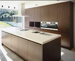 what are veneer cabinets 7 wood veneer kitchen cabinets ideas