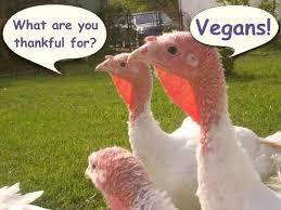 7 thanksgiving struggles only vegans will understand