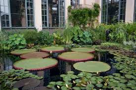 Botanical Gardens Pennsylvania Visiting Longwood Gardens Southeastern Pennsylvania S Most