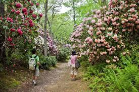 heritage museums u0026 gardens gardens heritage museums u0026 gardens