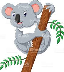 cute koala holding tree stock vector art 505240734 istock