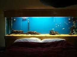 bedroom fish tank bedroom 42 bedroom furniture room paint home