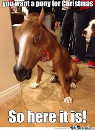 Funny Pony Memes - 20 super funny christmas memes volume 1 sayingimages com