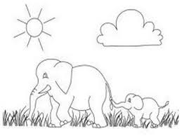 wild animal african elephant printable coloring pages realistic