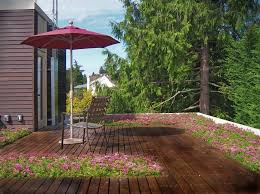 fire pit wood deck wood deck roof structure deck contemporary with sedums