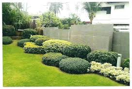 Bushes For Landscaping Small Landscape Bushes Mreza Club