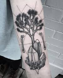 it was a pleasure to this joshua tree for devin thanks