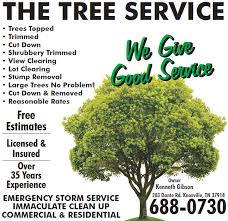 the tree service knoxville tn 37918 yp