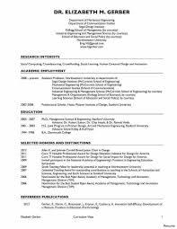 curriculum vitae sle college professor professional engineering cv format resume for templates 19a india