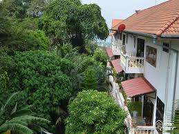 patong beach guest houses home decorating interior design bath