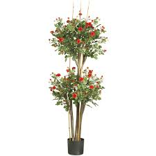 Potted Patio Trees by 5 Foot Mini Rose Tree Potted 5238