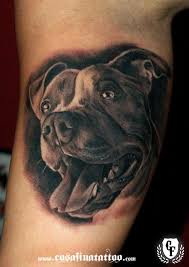 terrier tattoo uncategorized dog and cat