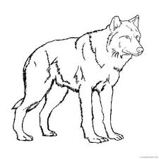 wolf coloring pages two wolves fighting coloring4free