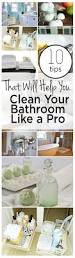 How To Clean Your Bathroom by How To Clean Your Bathroom Like A Pro