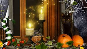 halloween background cat and pumpkin halloween full hd wallpaper and background 1920x1080 id 739648