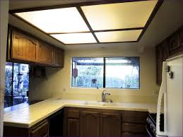 kitchen room awesome low profile can lights basement light