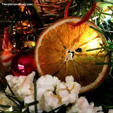 how to make dried orange slices tampa homebody