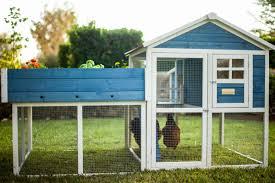 backyard chicken coops review advantek the rooftop garden chicken coop u0026 reviews wayfair