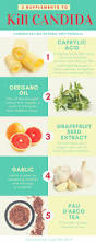 best 25 high sugar ideas on pinterest sugar diet chart high