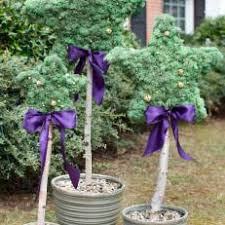 Topiary Planters - photos hgtv