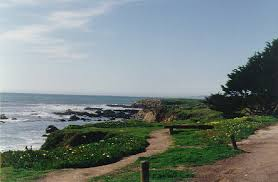 Moonstone Cottages By The Sea Cambria Ca by Stay Visit Cambria