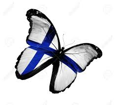 Finnish Flag Finnish Flag Butterfly Flying Isolated On White Background Stock