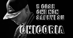 truceklan in the panchine 5 cose non sapevi su chicoria