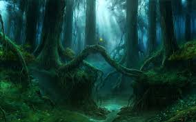 photo collection magic forest hd wallpapers