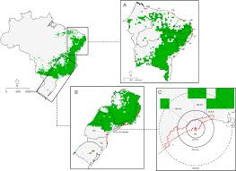 How Do The Eastern Lowlands Differ From The Interior Lowlands Invasive Potential Of The Pied Crow Corvus Albus In Eastern