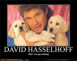 David Hasselhoff Meme - david hasselhoff very demotivational demotivational posters