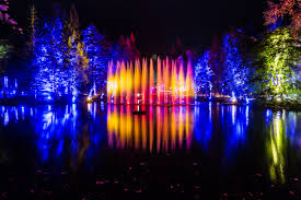 enchanted forest of light tickets enchanted forest set to give perthshire autumn economy boost the
