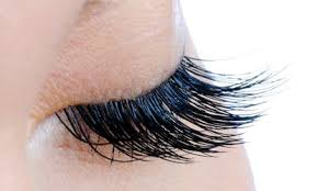 Comfort Eye Care Cabramatta Brow U0026 Lash Deals U0026 Coupons Groupon