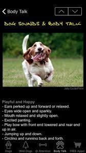 Dog Sounds & Body Talk by iGreenEarth iOS United States