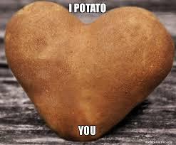 Potatoe Meme - i potato you make a meme