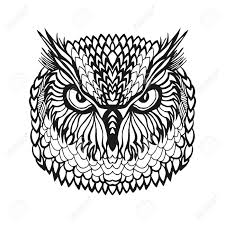 clipart owl black and white owl head black and white clipart clipartfest