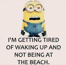 I M So Tired Meme - i m getting tired of waking up and not being at the beach minion