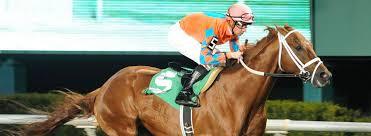 st patrick u0027s day at the park texas stallion stakes sam houston