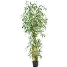 nearly 7 fancy style slim bamboo silk tree