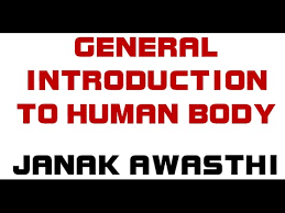 Anatomy And Physiology Introduction To The Human Body General Introduction To Human Body Human Anatomy And Physiology