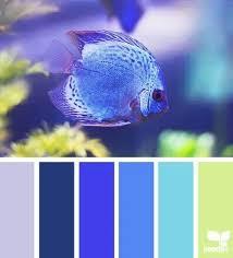 Dorm Bathroom Ideas Colors 24 Best Bathroom Ideas Images On Pinterest Bathroom Ideas Home